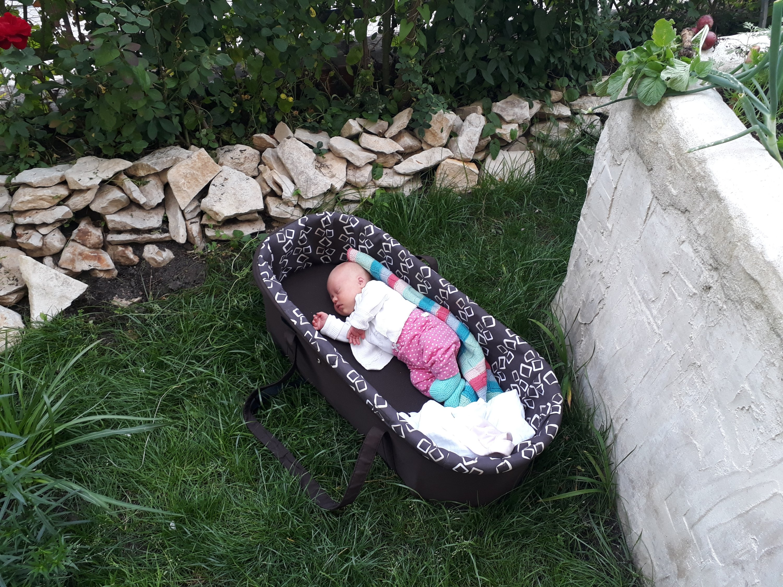 Foto: Ronja im Garten